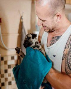fürdetés-kutyapanzió